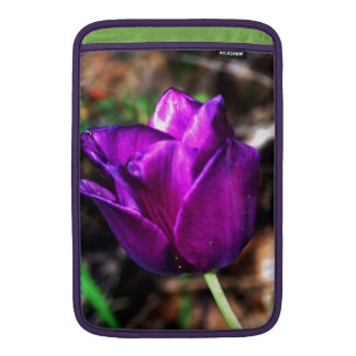 Tulipán púrpura del satén fundas MacBook