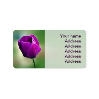 Tulipán púrpura etiqueta de dirección