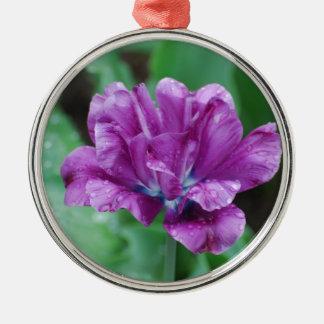 Tulipán púrpura floreciente del loro adornos de navidad