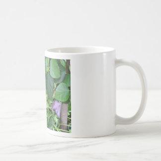 Tulipán púrpura taza