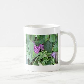 Tulipán púrpura taza de café