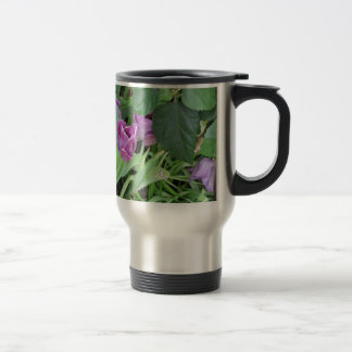 Tulipán púrpura tazas
