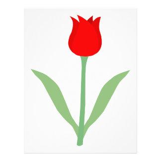 Tulipán rojo brillante elegante tarjetas informativas