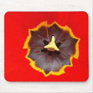 Tulipán rojo - cojín de ratón tapete de ratones