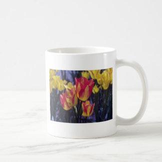 Tulipán rojo de Georgette, (Tulipa Multoflora) flo Taza Básica Blanca