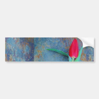 Tulipán rojo en pizarra del gris azul pegatina para auto