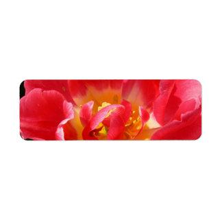 tulipán rojo etiqueta de remite