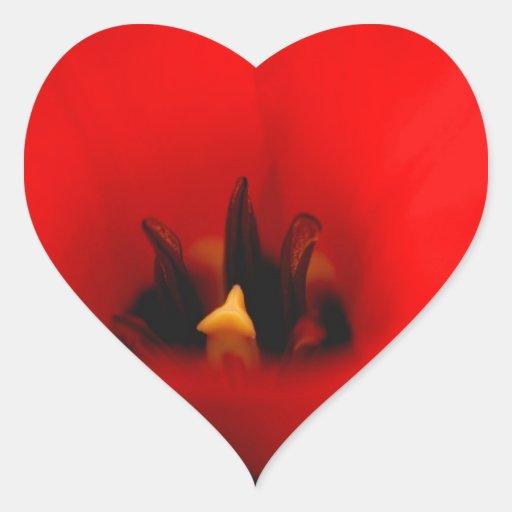 Tulipán rojo pegatina en forma de corazón