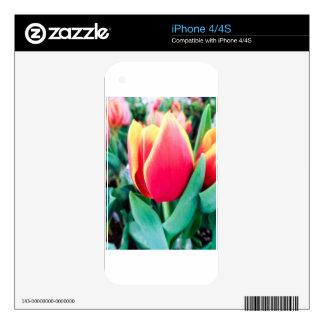 ¡Tulipán rojo - personalizable! Calcomanías Para El iPhone 4
