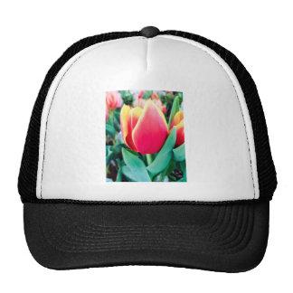 ¡Tulipán rojo - personalizable! Gorra