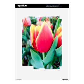 ¡Tulipán rojo - personalizable! Skin Para El iPad 2