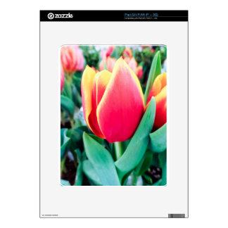 ¡Tulipán rojo - personalizable! Skins Para eliPad