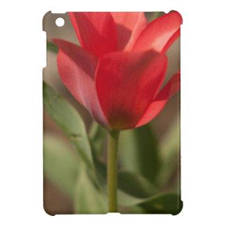 Tulipán rojo que alcanza para el Sun iPad Mini Protectores