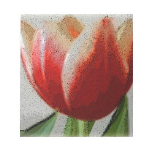 Tulipán rojo y blanco blocs