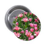 tulipán, rosa pins