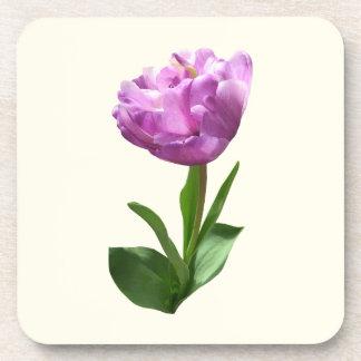 Tulipán rosado de lujo posavasos de bebidas