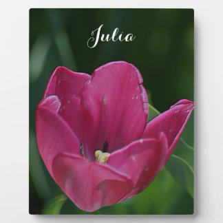 Tulipán rosado grabado en relieve placa de plastico