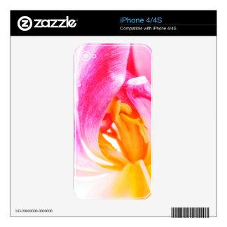 tulipán rosado iPhone 4 skin