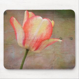 Tulipán rústico tapetes de ratones