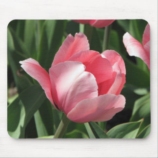 Tulipán Mousepad