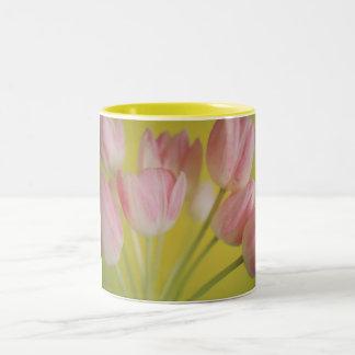 Tulipán Taza De Dos Tonos