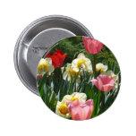 tulipán, tulipán rosado y narciso pin