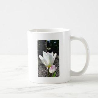 Tulipán y árbol taza clásica