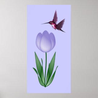 Tulipán y colibrí posters