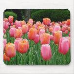 Tulipanes #1 alfombrillas de raton
