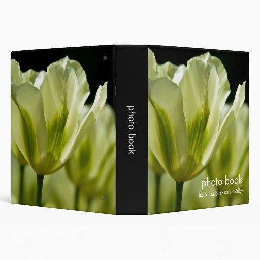 """Tulipanes abigarrados blancos y verdes DSC0856 Carpeta 1 1/2"""""""
