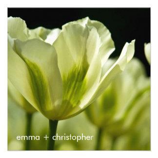 Tulipanes abigarrados blancos y verdes DSC0856 Invitaciones Personalizada