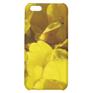 Tulipanes amarillos a través de rayos de sol