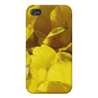 Tulipanes amarillos a través de rayos de sol iPhone 4 cobertura