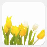 Tulipanes amarillos colcomanias cuadradas