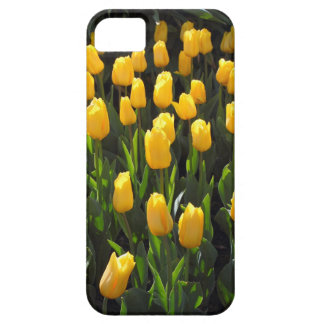 Tulipanes amarillos iPhone 5 Case-Mate cobertura