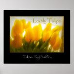 Tulipanes amarillos preciosos poster