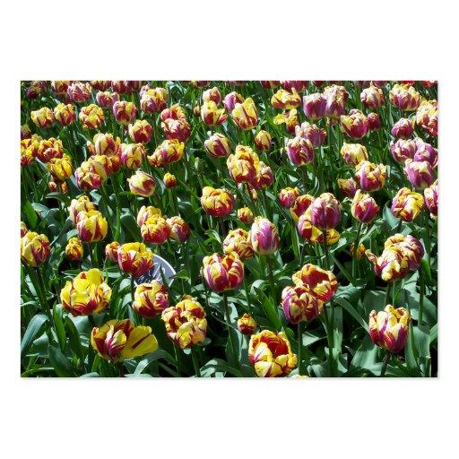 Tulipanes amarillos y púrpuras tarjetas de visita grandes