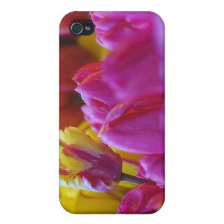 tulipanes amarillos y rosados iPhone 4 fundas