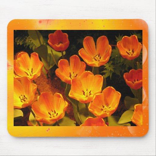 Tulipanes anaranjados alfombrilla de raton