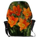 Tulipanes anaranjados bolsas de mensajeria