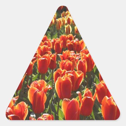 Tulipanes anaranjados pegatina triangular