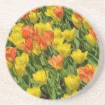 Tulipanes anaranjados y amarillos de la primavera posavasos para bebidas