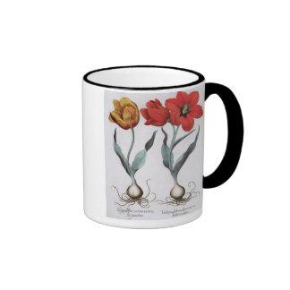 Tulipanes: colore del cinnabrio del serotina del g taza de café