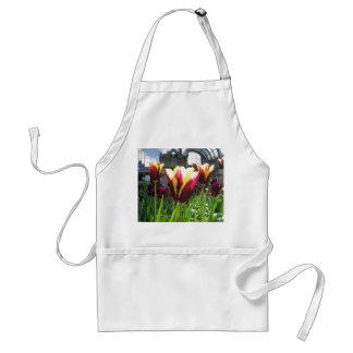 Tulipanes coloridos de la ciudad delantal