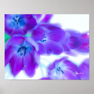 Tulipanes coloridos, femeninos, románticos, póster
