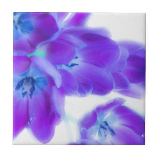 Tulipanes coloridos, femeninos, románticos, púrpur azulejo ceramica