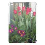 Tulipanes de 1 primavera