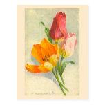 Tulipanes de Catherine Klein Tarjeta Postal