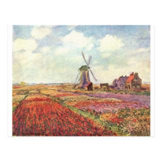 Tulipanes de Claude Monet en Holanda Tarjetas Postales