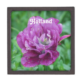 Tulipanes de Holanda Cajas De Recuerdo De Calidad